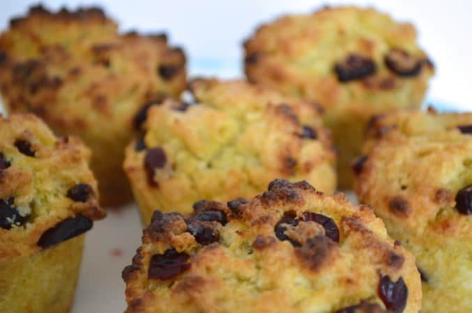 Gluten and Dairy Free Cranberry and Orange Muffins