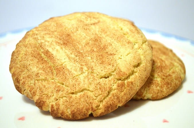 Gluten and Dairy Free Cinnamon Sugar Cookies
