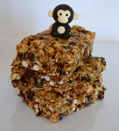 Gluten and Dairy Free No Bake Breakfast Bars