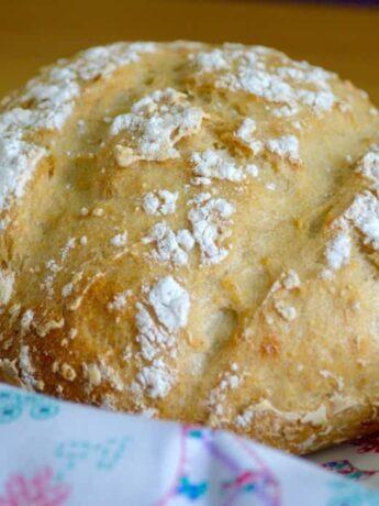 sour dough cob