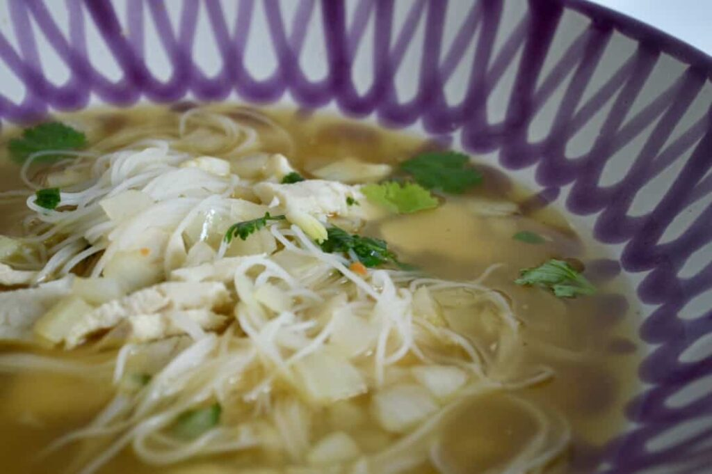 Gluten and Dairy Free Chicken and Coriander Noodle Soup